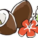 ココナッツオイルの健康効果は嘘?おすすめできない理由。